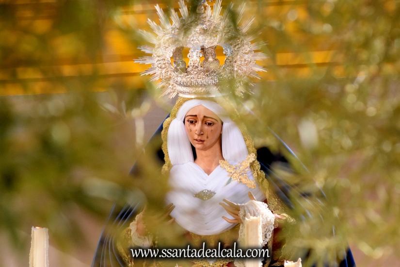 rosario-vespertino-con-la-virgen-de-los-angeles-2016-13