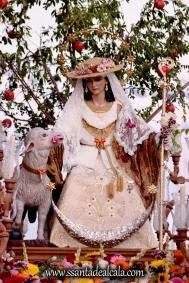 salida-procesional-de-la-divina-pastora-de-las-almas-2016-13