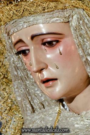 Solemne Besamanos a la Virgen de la Amargura 2017 (11)