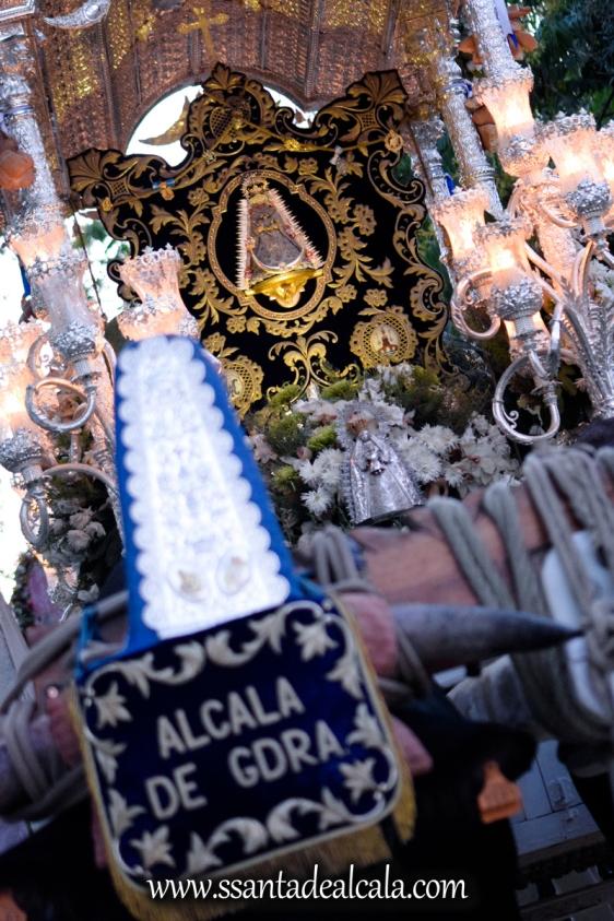 Regreso de la Hermandad del Rocio 2017 (6)