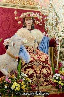 Tríduo a la Divina Pastora de las Almas (16)
