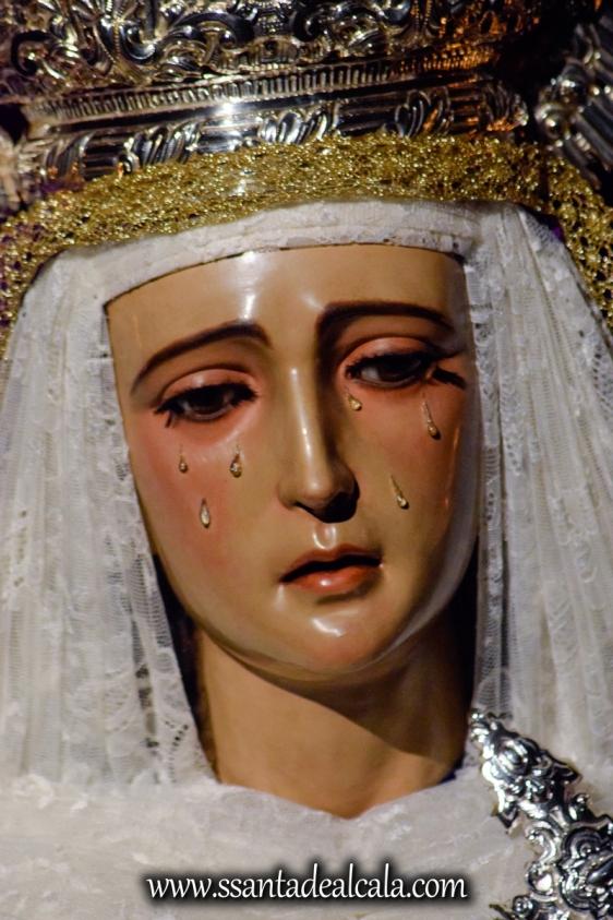 Besamanos a la Virgen de la Amargura (10)